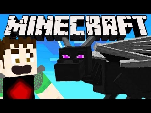 Minecraft - ENDER DRAGON