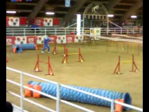 X-Center School VOGHERA 2009 Jumping Serpico Dom4