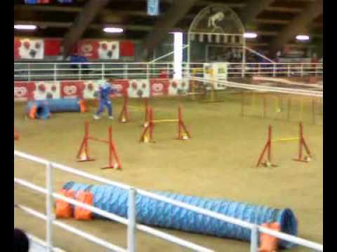 X-Center School VOGHERA 2009 Jumping Serpico Dom4