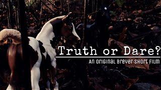Truth or Dare? |:| An Original Breyer Halloween Short Film