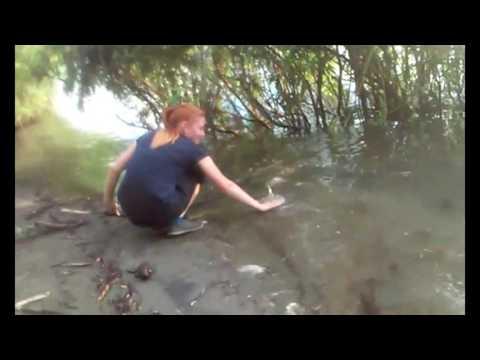 ловля на оби в августе видео