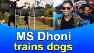 MS Dhoni trains dogs at his Ranchi farmhouse | Mahindra Singh Dhoni Viral Video