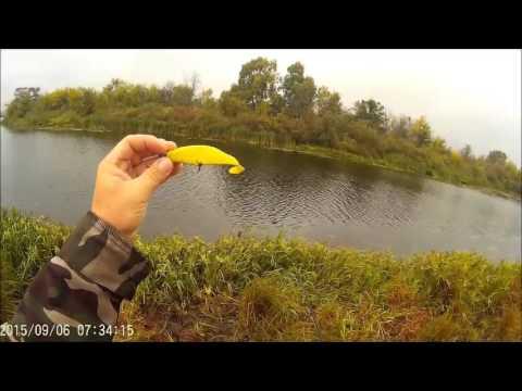 как ловить щуку в мутной воде весной видео