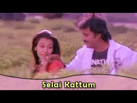 Selai Kattum | Rajnikanth | Amala | Bharathiraja | Kodi Parakathu | Tamil Romantic Song