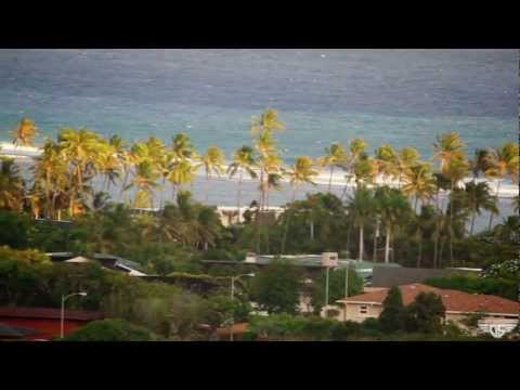 Gravity Skateboards - Guto Lamera Longboarding in Hawaii
