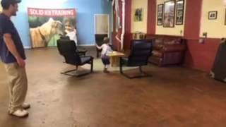Dog Training | Dance Off | Solid K9 Training Dog Training