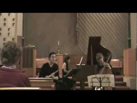 Johannes Brahms: Piano Trio No. 1 IV. Allegro