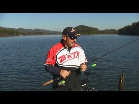 Crappie Fishing Standing Timber - Weiss Lake Guide Service