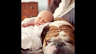 ✅😍💖Cute Babies Sleeping With Dogs   Dog Loves Baby Videos 2019✅😍💖