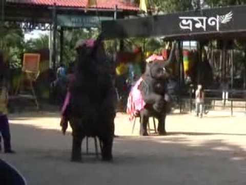 Hathi Mere Sathi Kalna video