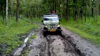 Funny Jeep Ride, Muthanga Wayanad Kerala India