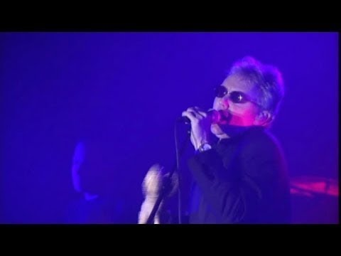 Roger Taylor - Everybody Hurts Sometime