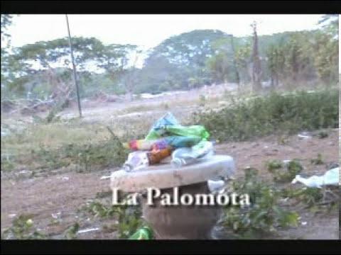 Experimentos cientificos Colima 2008