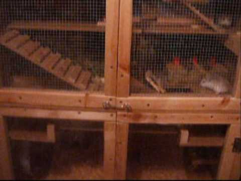 How to build a diy hamster cage instructions how to for How to make a diy hamster cage