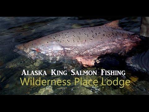 Juneau salmon fishing season for Salmon fishing season