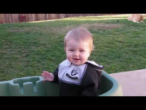 Funny Babies and Dogs are Best friends ~ fun and fails video