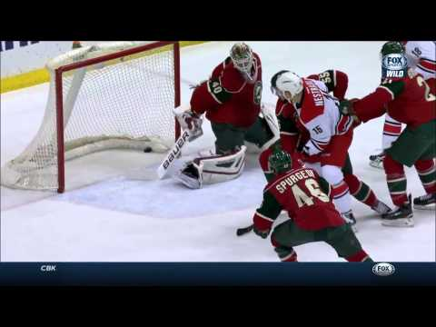 Carolina Hurricanes vs. Minnesota Wild 14.02.2015