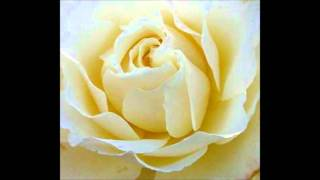 Larry Sparks - Don't Neglect the Rose