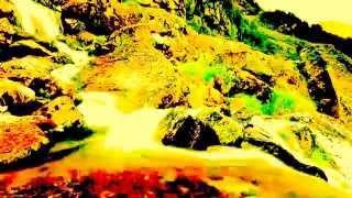 The Water Live Allbum ( Media Genre Media ( Industry 2014
