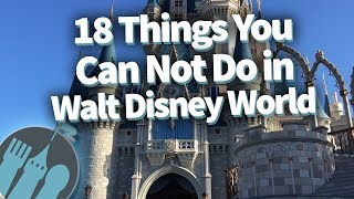 18 Things That Had To Be BANNED In Disney World!