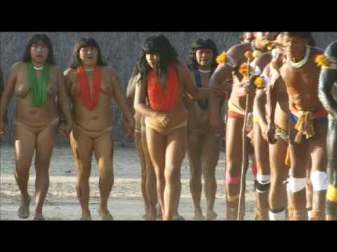 Xingu Pequi Music Videos