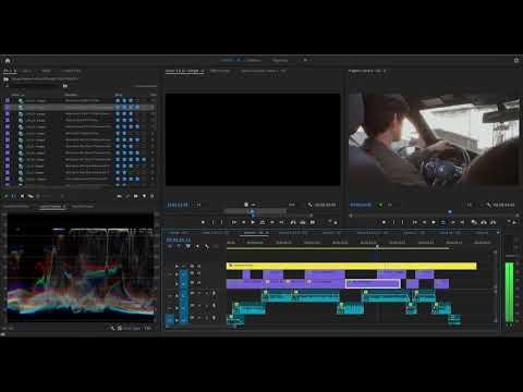 Premiere 15 2 0 Program Window Blackout