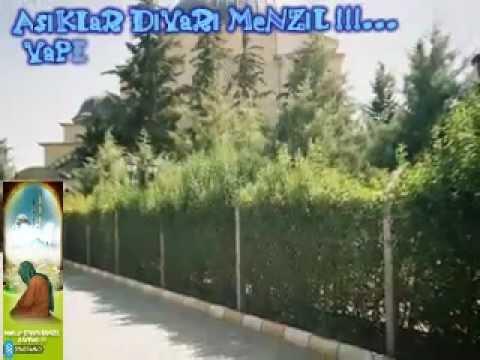 Hasan Dursun - ARAYU ARAYU GAVS-I SANİ