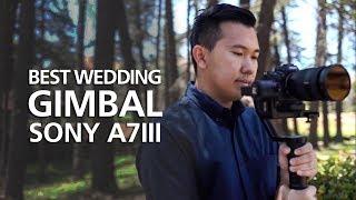 Best Gear for Wedding Filming- Sony a7III│G Master 24-70mm│ZHIYUN Crane 2