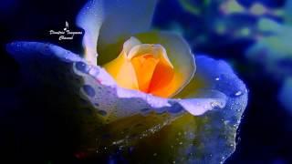 √♥ Nana Mouskouri √ Serenade (Schubert) √ Lyrics