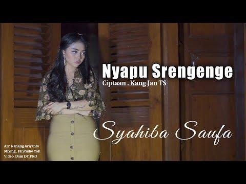 Download SYAHIBA SAUFA - NYAPU SRENGENGE    Mp4 baru