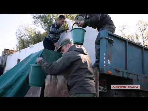"""Видео """"Новости-N"""": В Николаеве состоялось зарыбление реки Ингул"""