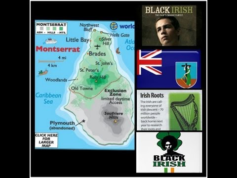 I'm Living Proof There Are Black Irish// ★★Update★★ Happy St. Patricks Day