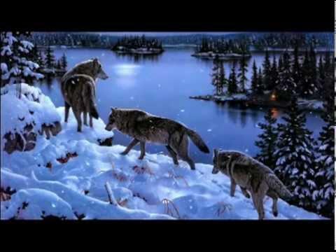 Catharsis - Волки