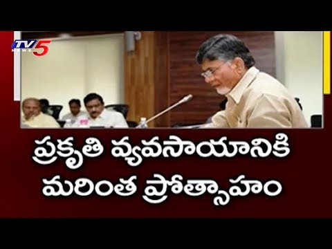 Key Decisions Taken in AP Cabinet Meet | Amaravati | TV5 News