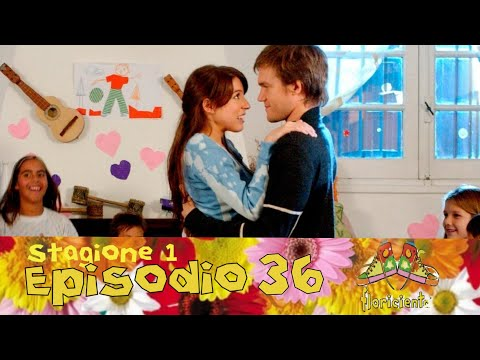 Flor 1 Episodio 36 HD