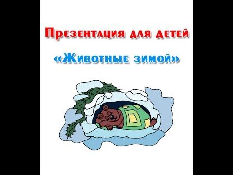 Белорусские Решебники 7 Класс