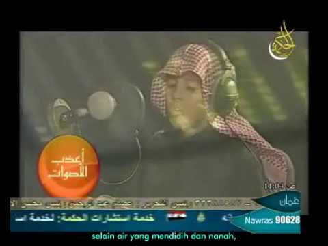 Surat An-naba - Muhammad Thaha Al-junayd (terjemah Bahasa Indonesia) video