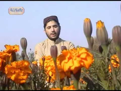 Masido  Minbaro Lobe Kawe Pashto Naat By Hafiz Sohail Ahmad Vol 21 video