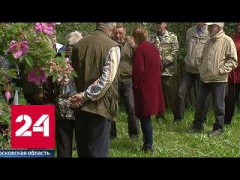 Исчезнувшей деревней Выдрино заинтересовались в СКР