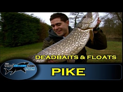 Pike fishing with Deadbaits and Floats - The Totally Awesome Fishing Show