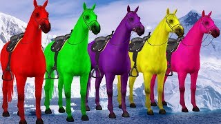 Horse Colors Finger Family Songs for Preschool Kids Toddlers || Colours with Animals for Children