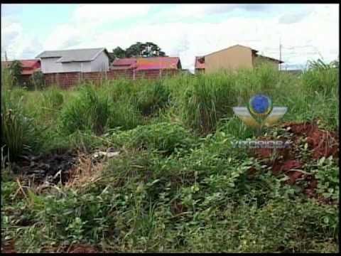 Rua 'www.mato.com.br' causa transtorno à vizinhança