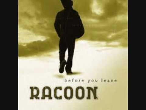 Racoon - Particular