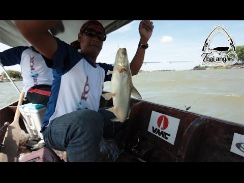 Angler Trip: ตกปลาหน้าดินกับไต๋ต้น เจ้าพระยา