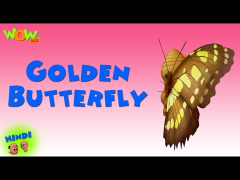 Golden Butterfly - Motu Patlu in Hindi WITH ENGLISH, SPANISH & FRENCH SUBTITLES thumbnail
