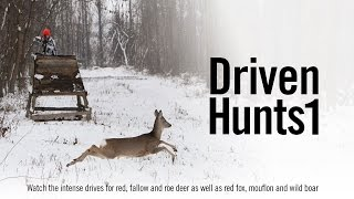 Driven Hunts 1 - Hunters Video