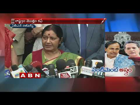 Sonia Gandhi To Play Key Role In Telangana Congress | T-Congress Action Plan | ABN Telugu