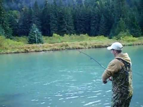 Largest silver salmon ever caught in Alaska ★★★★★