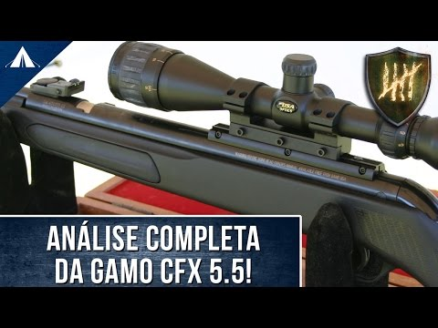 Review: Carabina de pressão GAMO CFX
