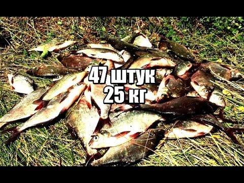 рыбалка на карася весной на реке